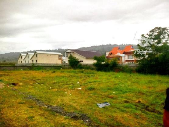 فروش زمین مسکونی 250 متر در چمستان در گروه خرید و فروش املاک در مازندران در شیپور-عکس1
