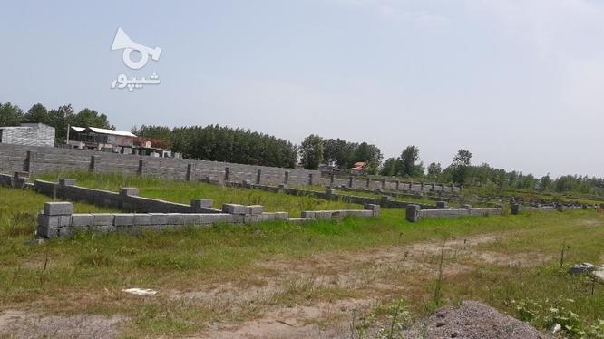 ۳۸۴ متر زمین محصور شده در گروه خرید و فروش املاک در گیلان در شیپور-عکس1