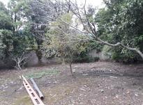 فروش زمین مسکونی 255 متر در چابکسر در شیپور-عکس کوچک