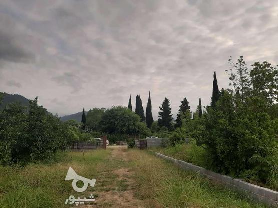 فروش زمین260 متری در نوشهر/مارگیرده در گروه خرید و فروش املاک در مازندران در شیپور-عکس1