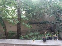 اجاره آپارتمان 145 متر در پارک ساعی در شیپور-عکس کوچک