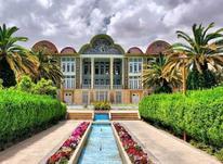 باغ خوب میخای؟ بیا تو دنیای باغ در شیپور-عکس کوچک