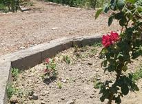 باغ چهار دیواری ۶۰۰ متر در شیپور-عکس کوچک