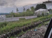 زمین 1000متری با کاربری مسکونی  در شیپور-عکس کوچک