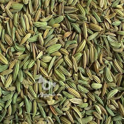 زیره سبز بوجاری شده کاملا ارگانیک در گروه خرید و فروش خدمات و کسب و کار در گلستان در شیپور-عکس1