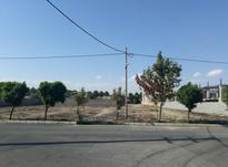 زمین 1500 متری مناسب ساخت شهرک ناز فردیس در شیپور-عکس کوچک