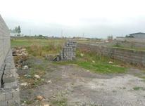 فروش زمین مسکونی صفاییه بابلسر در شیپور-عکس کوچک
