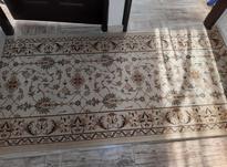 فرش برای راهرو  در شیپور-عکس کوچک