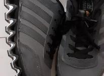 کفش کتونی سایز 42 در شیپور-عکس کوچک