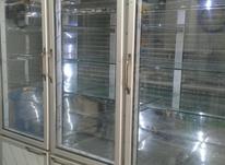 یخچال ایستاده صنعتی موتور 1 اسب در شیپور-عکس کوچک