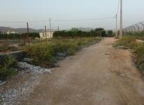 باغ شهری حسن لوری در شیپور-عکس کوچک