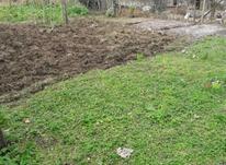 زمین 200متری در رضوانشهر  در شیپور-عکس کوچک
