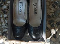 سه جفت کفش  در شیپور-عکس کوچک