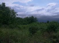 ۵۰۰ متر زمین مسکونی کریم آباد در شیپور-عکس کوچک