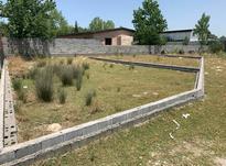 زمین مسکونی 206 متر در ذوالفقاری بابلسر در شیپور-عکس کوچک