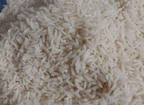 برنج هاشمی در شیپور-عکس کوچک