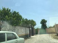 فروش زمین مسکونی 710 متر در سهیلیه - زعفرانیه در شیپور-عکس کوچک