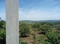 فروش ویژه زمین باغی 45000 متر در قائم شهر در شیپور-عکس کوچک