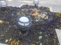 باغبانی وسمپاشی 100٪تضمینی در شیپور-عکس کوچک