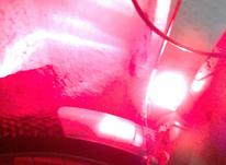 فلاشر و چراغ پلیسی دوچرخه و موتور فوری در شیپور-عکس کوچک
