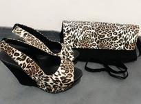 کیف و کفش ست زنانه نو در شیپور-عکس کوچک