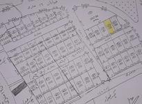 زمین مسکونی در کوی وحدانی گلشهر  در شیپور-عکس کوچک