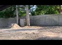 فروش باغ 5800 متری سند تک برگ در شهریار در شیپور-عکس کوچک