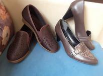 کفش زنانه نو در شیپور-عکس کوچک