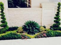 طراحی و اجرای فضای سبز  در شیپور-عکس کوچک