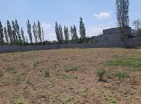 زمین مسکونی سرخدشت در شیپور-عکس کوچک