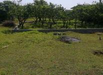 ۳۵۰ متر مسکونی جاده نعمت آباد در شیپور-عکس کوچک