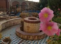 باغ ۱۰۰۰ متر موقعیت عالی در شیپور-عکس کوچک