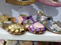 واگذاری مغازه کفش کودک در شیپور-عکس کوچک