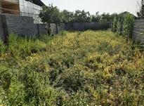 معاوضه زمین مسکونی با ماشین در شیپور-عکس کوچک