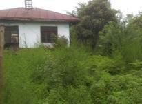 فروش خانه و کلنگی 750 متر در رضوانشهر در شیپور-عکس کوچک