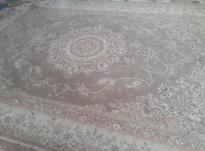 یک جفت فرش 12 متری در شیپور-عکس کوچک