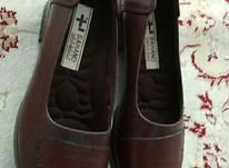کفش چرم اصل در شیپور-عکس کوچک