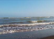 فروش زمین ساحلی 1500 متر در منطقه ۱ رامسر در شیپور-عکس کوچک
