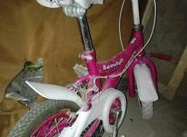 دوچرخه 12 سالم در شیپور-عکس کوچک