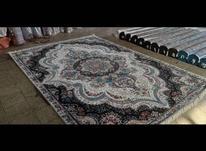 فرش  فروش فوری در شیپور-عکس کوچک