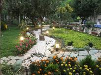 طراحی مشاوره و اجرای فضای سبز در شیپور-عکس کوچک