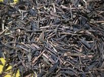 چای شمال به شرط در شیپور-عکس کوچک