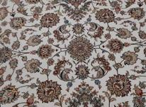 فرش 700 شانه کاشان 3عدد دونه ای 1500 در شیپور-عکس کوچک