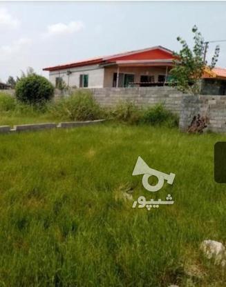 فروش زمین247 مترمحمودآباد در گروه خرید و فروش املاک در مازندران در شیپور-عکس1