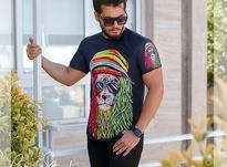 تیشرت مردانه مدل Maned در شیپور-عکس کوچک