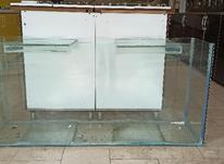 شیشه اکواریوم بزرگ در شیپور-عکس کوچک