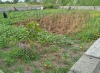فروش زمین محصور شده در شیپور-عکس کوچک