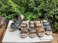 فروش کفش تابستانی پسرانه در شیپور-عکس کوچک