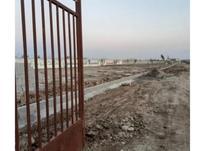 فروش زمین289متر در محمودآباد/جاده سرخرود/بیواسطه/سنددار در شیپور-عکس کوچک