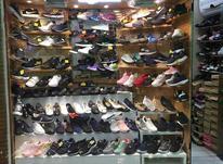 فروش انواع کفش وکتونی در شیپور-عکس کوچک